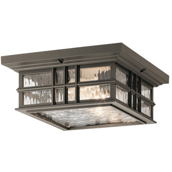 Outdoor Ceiling 2Lt (10684 49834OZ)