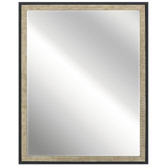 Mirror (10684 41122DAG)