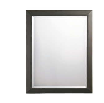 Mirror (10684 41011OZ)