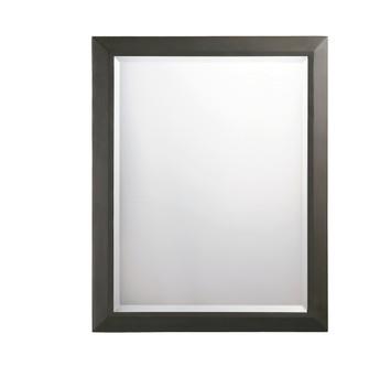 Mirror (10684|41011OZ)