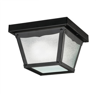 Outdoor Ceiling 1Lt (10684 365BK)