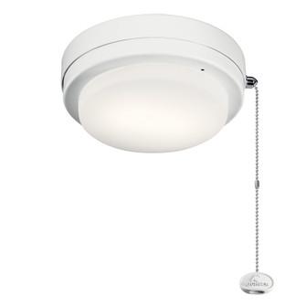 Optional LED Climates Fixture (10684|338629MWH)