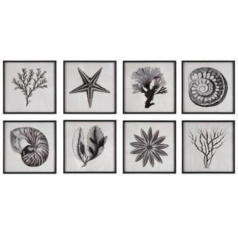 Uttermost Sea Living Framed Prints, S/8 (85 41429)