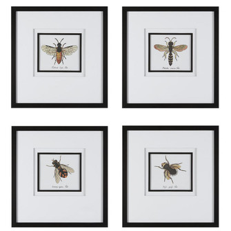 Uttermost Anthophila Framed Prints, S/4 (85 41428)