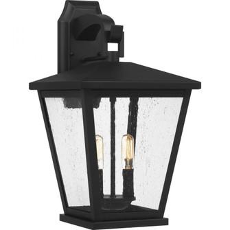 Joffrey Outdoor Lantern (26|JFY8411MBK)