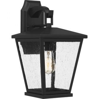 Joffrey Outdoor Lantern (26|JFY8409MBK)