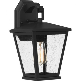 Joffrey Outdoor Lantern (26|JFY8408MBK)