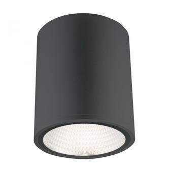 CASK,1LT LED FLUSHMOUNT,8W,BLK (4304|34328-025)