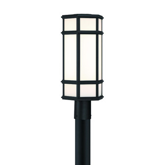 20'' outdoor LED post light (4304|42690-016)