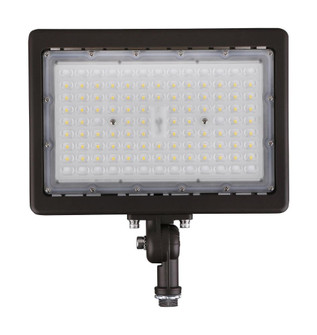 70W LED FLOOD LIGHT (81|65/615)