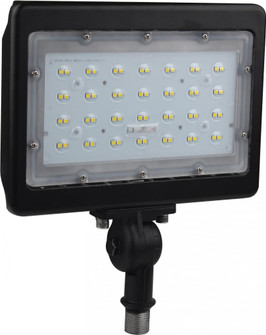 LED 50W LARGE FLOOD LIGHT (81|65/538)