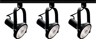 BLACK PAR30 GIMBAL RING TRACK (81|TK317)