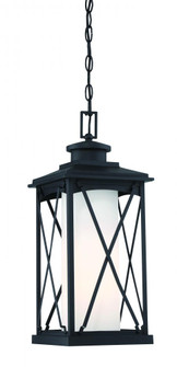 1 LIGHT CHAIN HUNG OUTDOOR (10 72684-66)