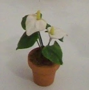 Dollhouse Miniature - 1614-1 - Flower Kit: Antherium - White