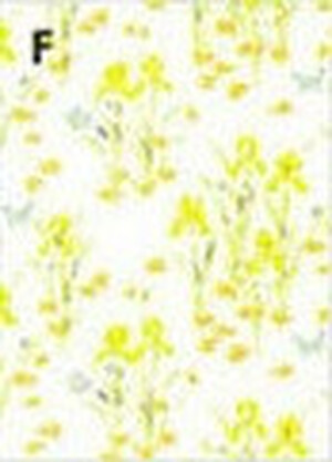 MG114D23 - WP -MINI IRIS - YELLOW
