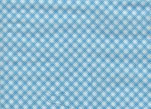 "4190113 - Fabric: Blue & White Check - 9"" x 6"""