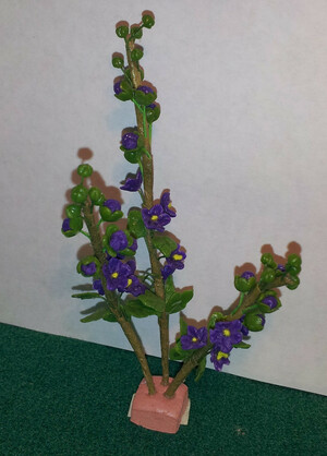 5142 - Plant: Hollyhock