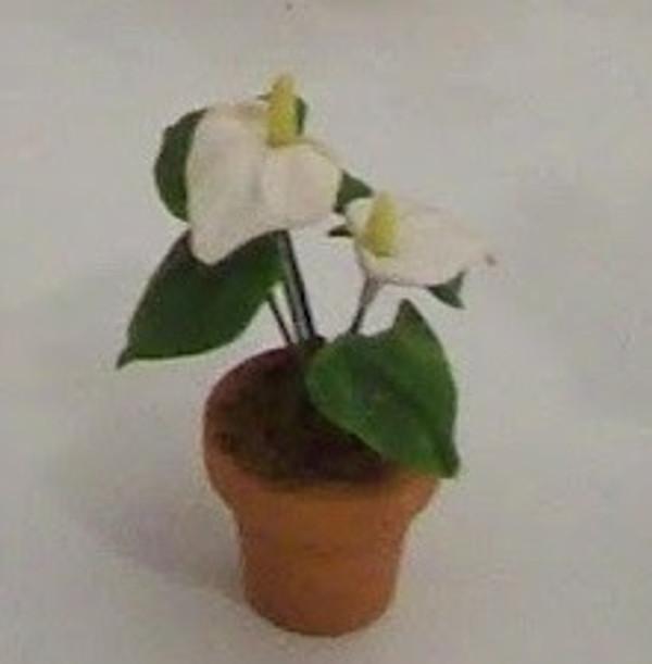 Dollhouse Miniature - 1614-1 - Flower Kit: Antherium - White