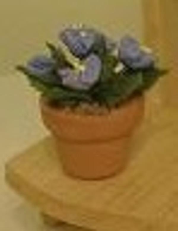 Violet - Blue