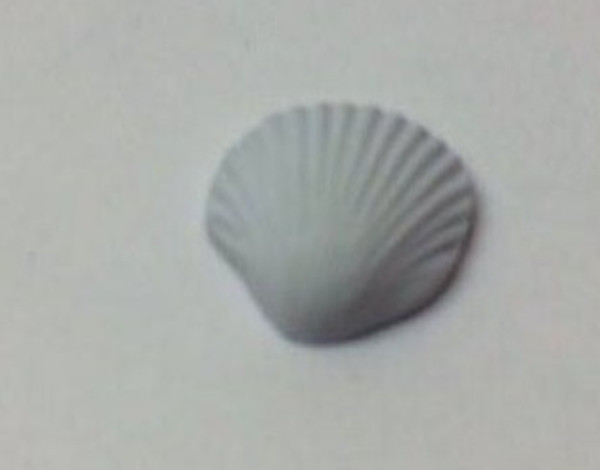 Dollhouse Miniature - 7871 - Sea Shell Soap - White