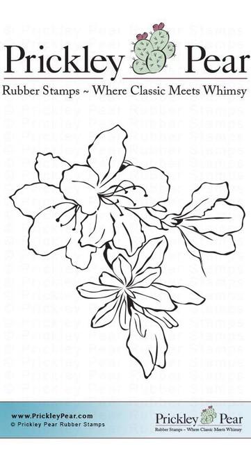 Amaryllis - Red Rubber Stamp