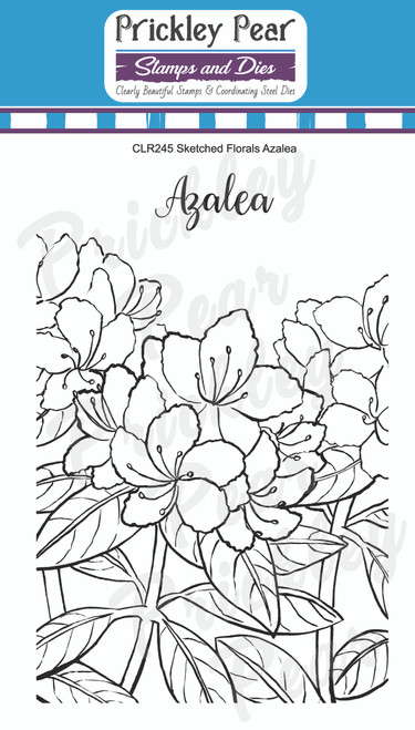 CLR245 Sketched Florals - Azalea Clear Stamp Set