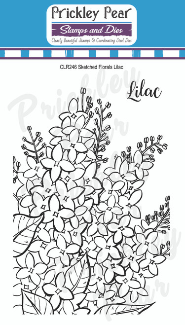 Prickley Pear Sketched Florals - Lilac CLR246