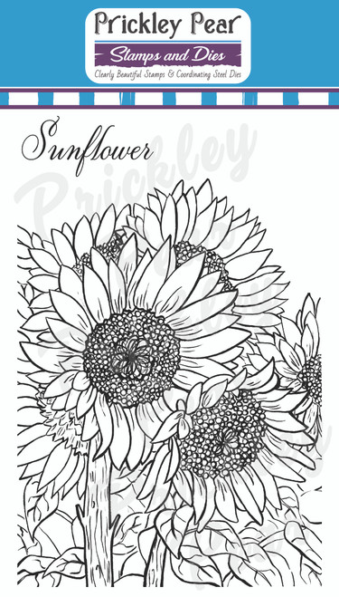 Sketched Florals - Sunflower - CLR248