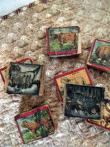 Vintage 1920s Toy Print Printing Wood Block Set Lithograph Animals