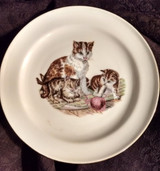 Vintage Czechoslovakia  China Plate Transfer Cat Kittens Children Decorator