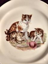 Vintage Czechoslovakia  China Plate Transfer Cat Kittens Children Decorator