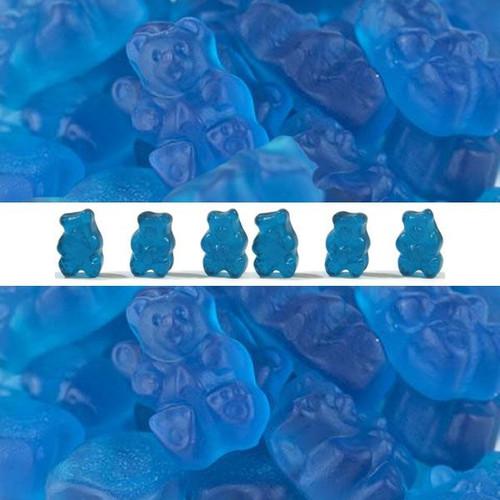 Gummi Bears Blue Raspberry 5lb Bag