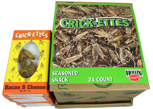 Real Cricket Snacks 24 Count Bacon and Cheese