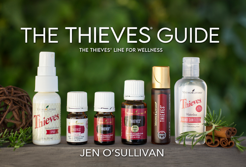 The Thieves Guide & Course