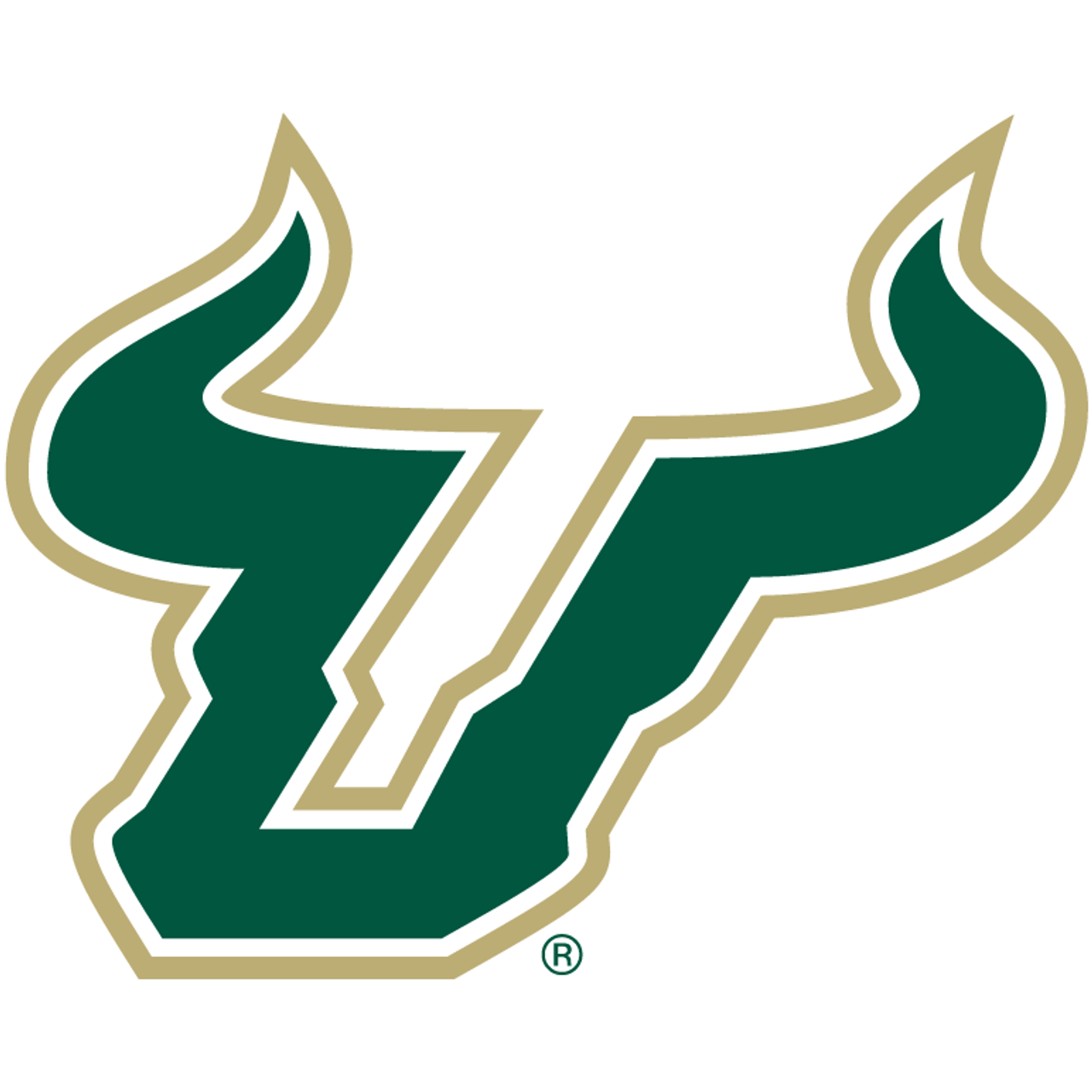 University of South Florida Bulls