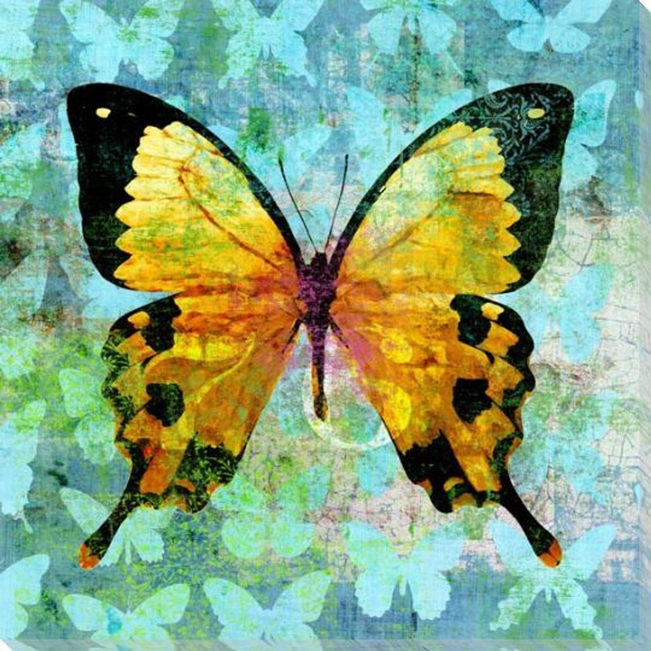 Butterfly Art Prints