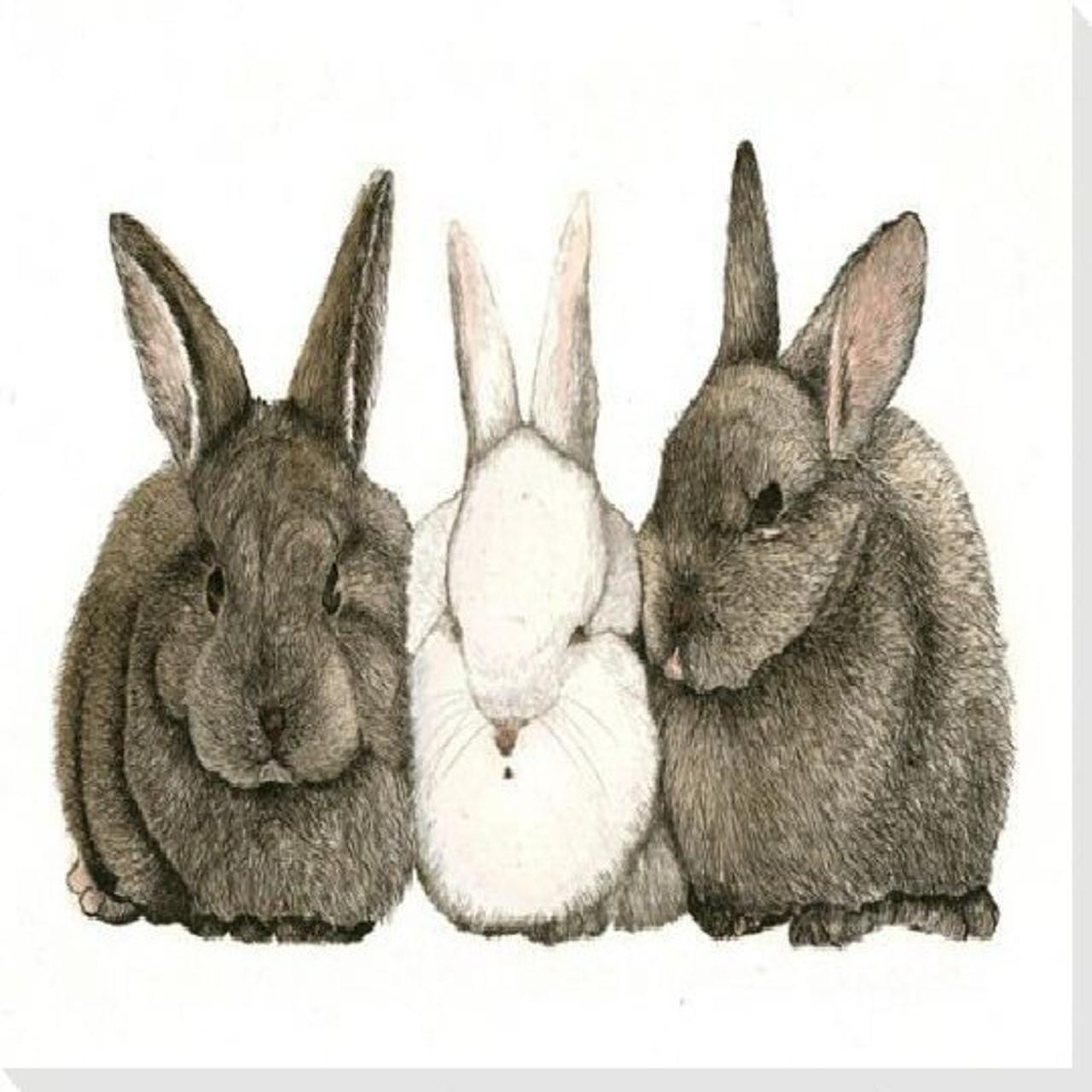 Bunny Rabbits Art Prints