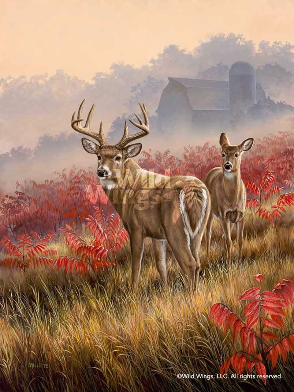 lifting fog whitetail deer art print wall art