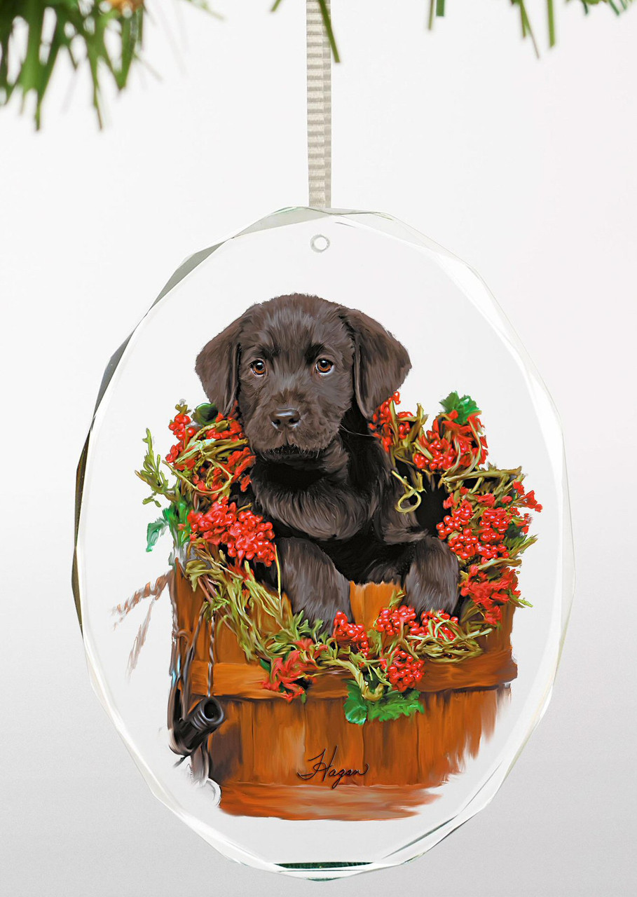 Holiday Surprise Black Lab Puppy Oval Glass Christmas Tree Ornaments Set Of 6 Christmas Decorations Wild Wings