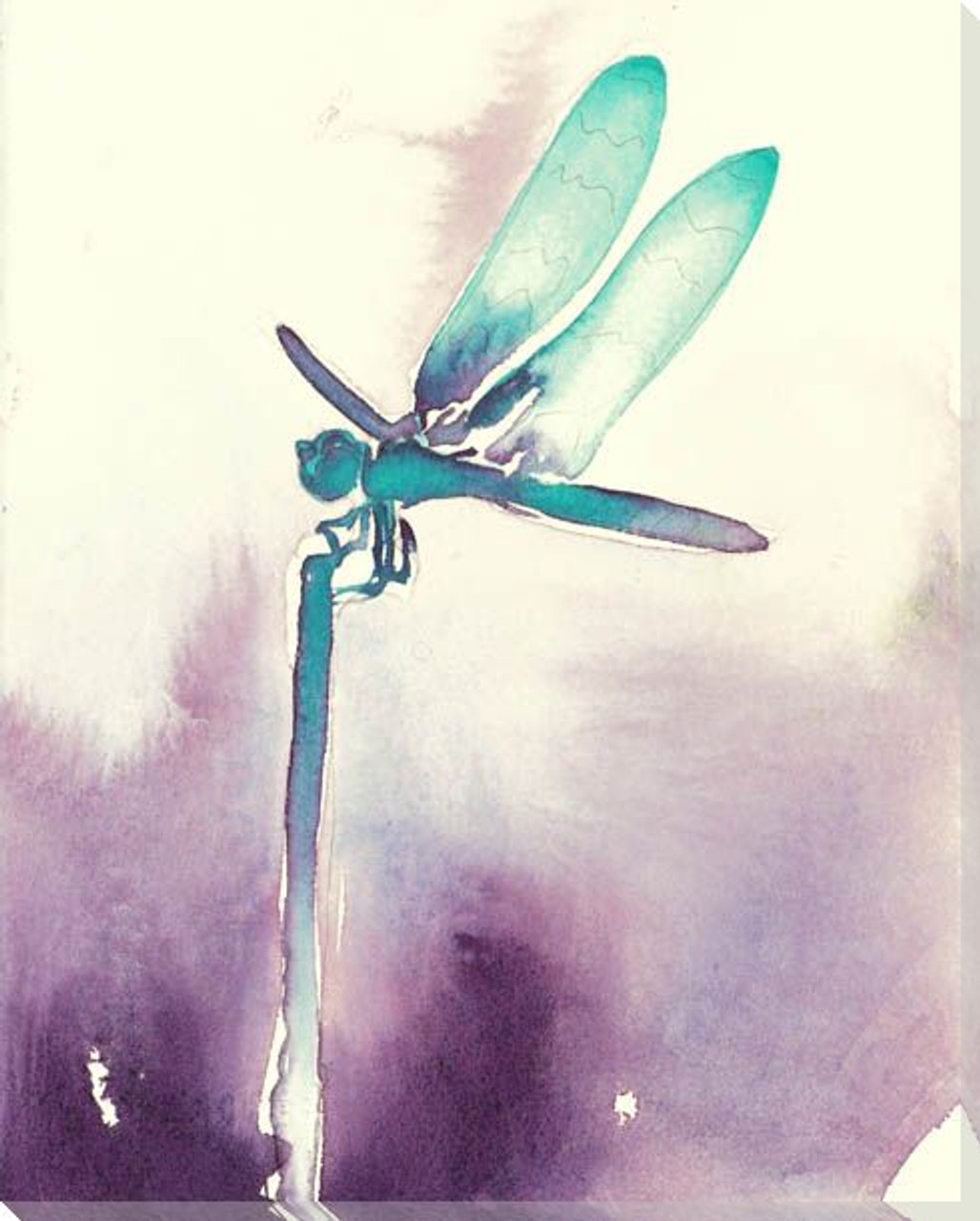 Everglades Dragonfly Wrapped Canvas Giclee Print Wall Art Wall Decor Artwork