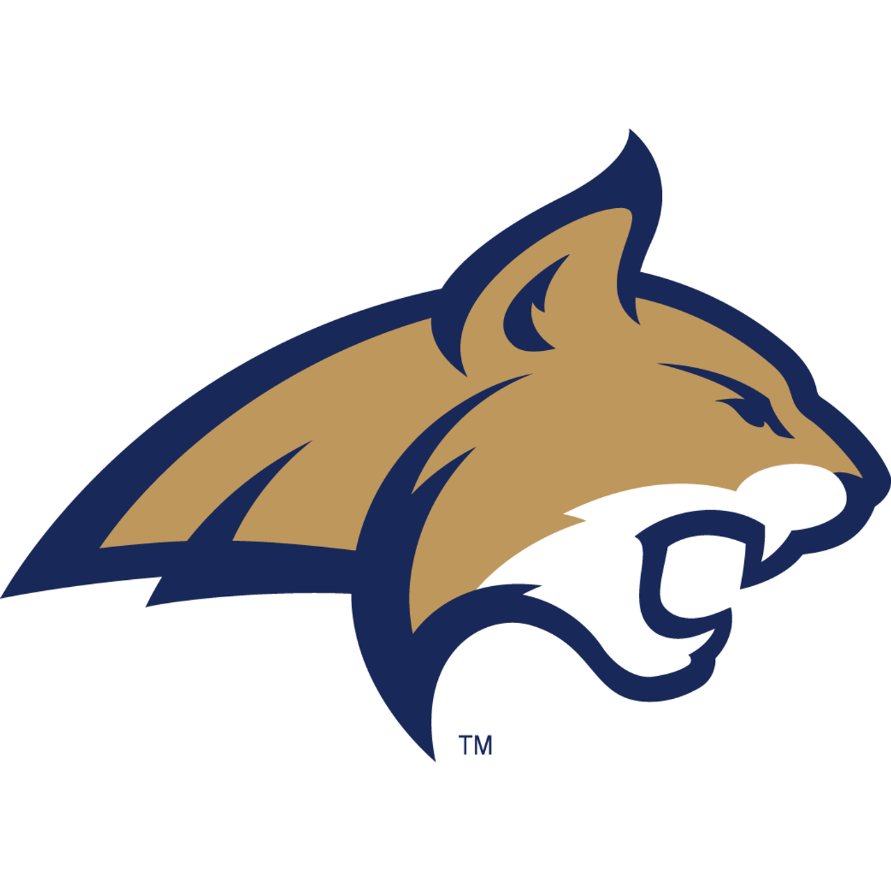 Montana State Fighting Bobcats