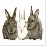 Bunny Rabbits Art Prints