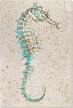 Sea Horse 2 Wrapped Canvas Giclee Print Wall Art