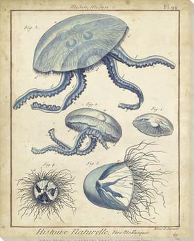 Jellyfish II Wrapped Canvas Giclee Print Wall Art