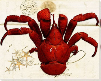 Crab French Letter Wrapped Canvas Giclee Print Wall Art