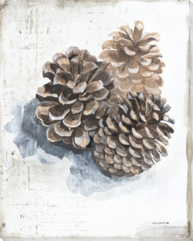 Pine Cones Wrapped Canvas Giclee Print Wall Art