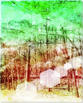 Evergreen Trail I Wrapped Canvas Giclee Print Wall Art