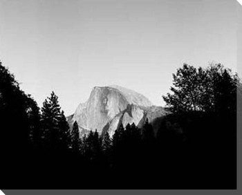 Half Dome in Trees Wrapped Canvas Giclee Print Wall Art