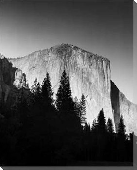 El Capitan in Trees Wrapped Canvas Giclee Print Wall Art