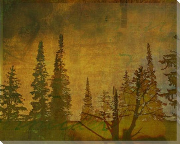 Shadow of Trees One Wrapped Canvas Giclee Print Wall Art